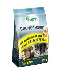 BROMUS HOBBY BLOCCO 300 g Copyr